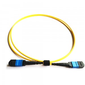 SM 12fiber Mpo Patch Cord Type B